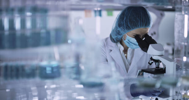Working with medical samples. Woman using microscope. Looking through glassware stock photo