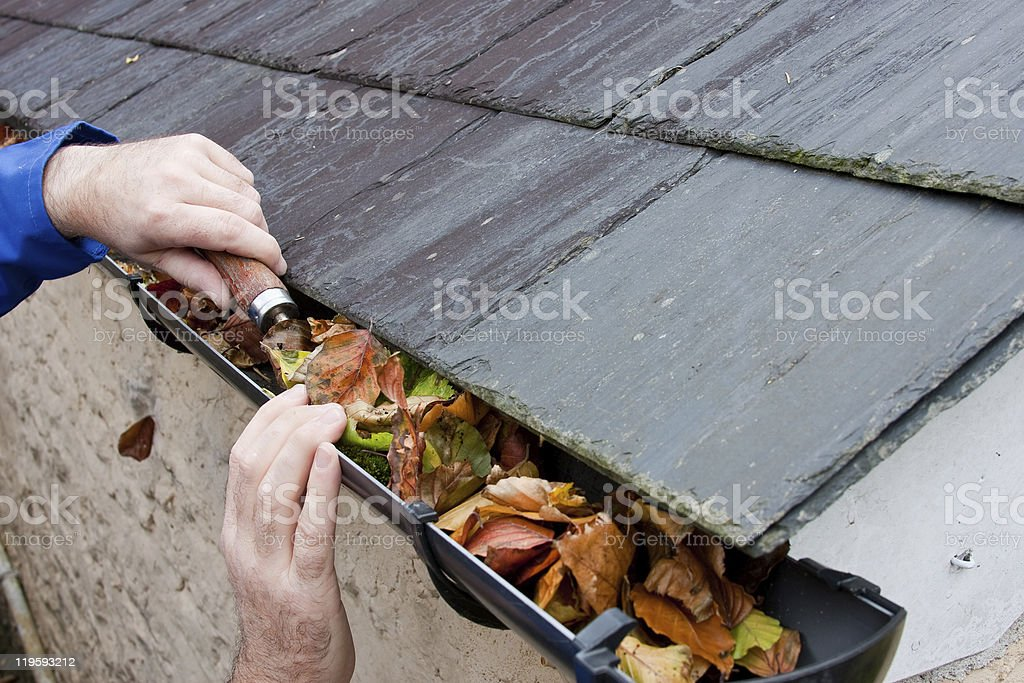 Workman Clearing Autumn Leaves from Gutter stock photo