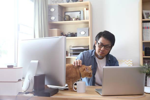 Workspace picture id843118504?b=1&k=6&m=843118504&s=612x612&w=0&h=lifbdqieeahth8uwwvgfkcbrsj4gje1rj mo8bqnn4q=