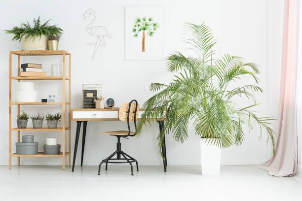 arbeitsbereich mit pflanzen - arbeitszimmer möbel stock-fotos und bilder
