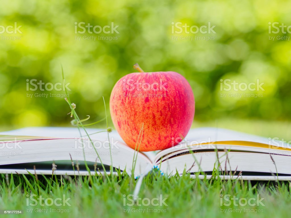 World Book Day concept. Red apple and pen put on open book photo libre de droits