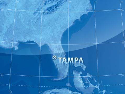 186815169 istock photo World City Tampa 174614809