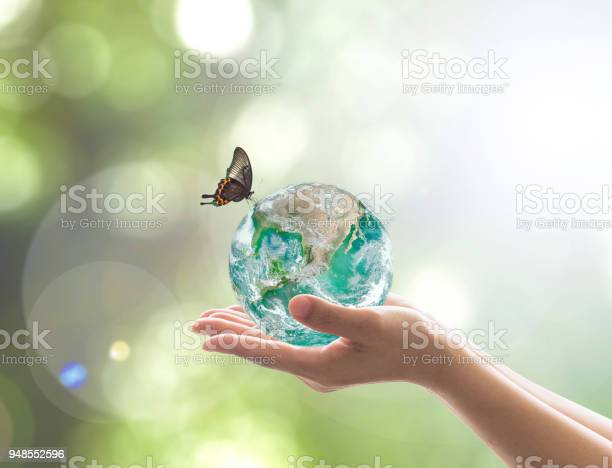 World environment day and environmental eco friendly concept with picture id948552596?b=1&k=6&m=948552596&s=612x612&h=ruuknvgbqf5jgsoz8dx49y6js qzejxueftjlxaqiwe=