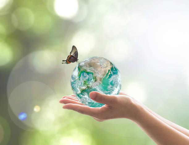 världsmiljödagen och miljömässiga eco vänliga koncept med grön jord på volontärens händer. del av bild från nasa - biologisk mångfald bildbanksfoton och bilder
