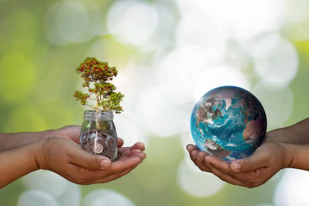 världsmiljödagen på med trädplantering och grön jord på alla med händerna bokeh grön bakgrund. skogsvårds koncept. - biologisk mångfald bildbanksfoton och bilder