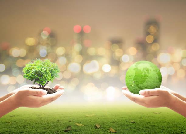 journée mondiale de l'environnement concept - rse photos et images de collection