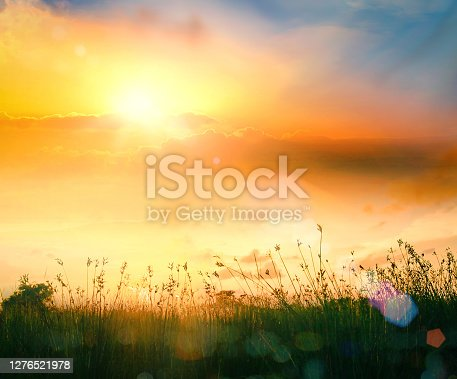 istock World environment day concept 1276521978