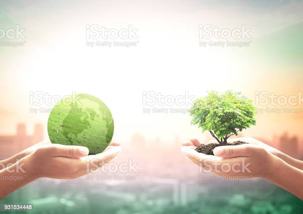 World environment day concept picture id931534448?b=1&k=6&m=931534448&s=612x612&h=6zbmvpr3zmmqsnn 21fxf98d5to6js1eabh8fnu3fas=