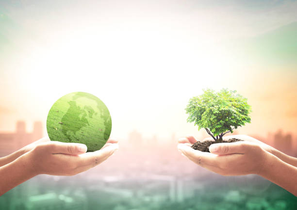 World environment day concept stock photo