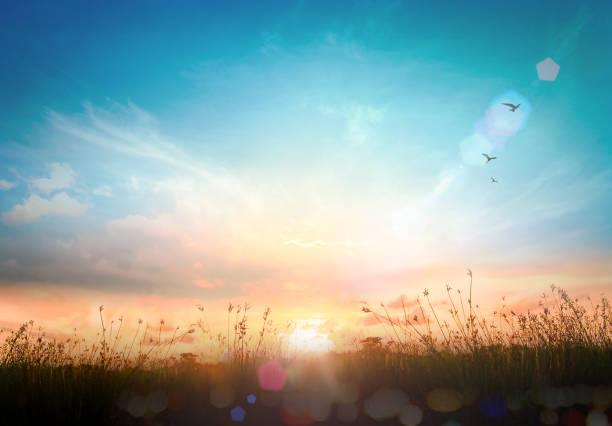 wereld milieu dag concept - new world stockfoto's en -beelden