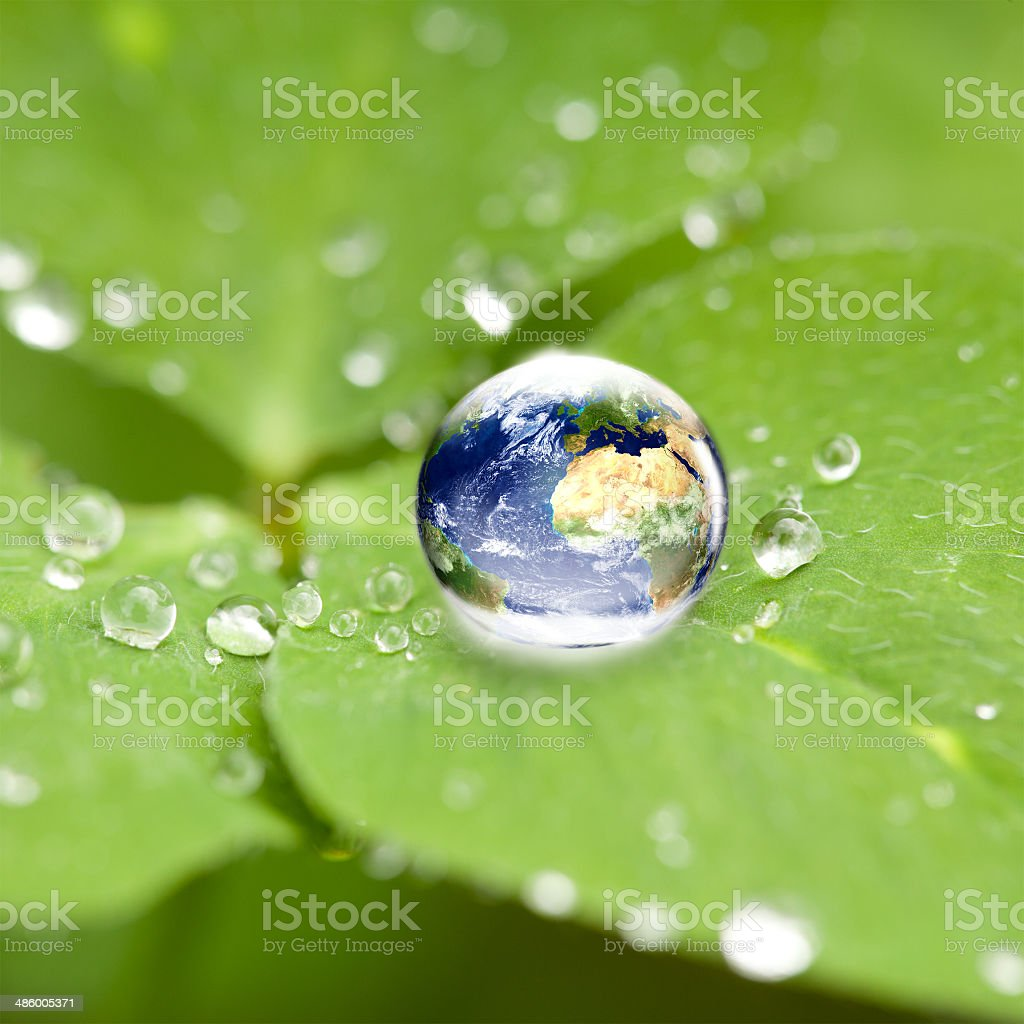world globe in water drop on cloverleaf stock photo