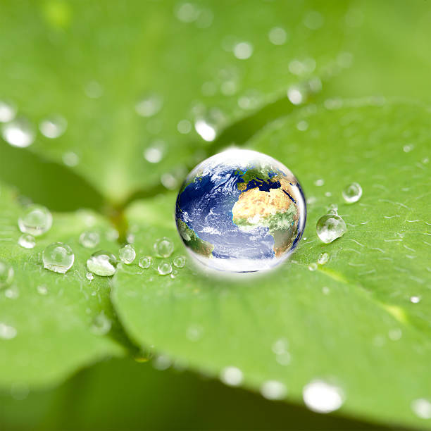 world globe in water drop on cloverleaf - earth day stock pictures, royalty-free photos & images