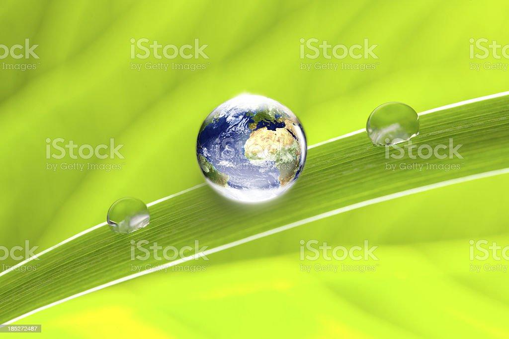 world globe on green leaf royalty-free stock photo