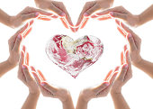 istock World heart health day, blood, organ donor concept with collaborative heart-shape hands 1157662471