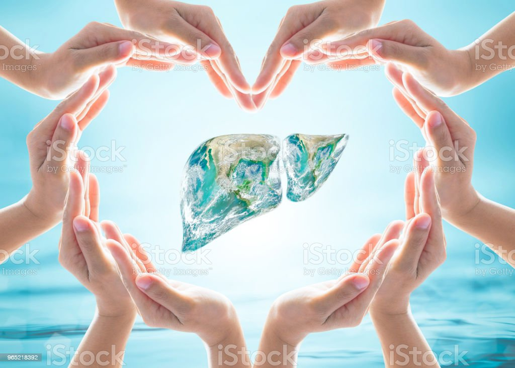 World Hepatitis C Day design logo concept with Liver organ in heart hands protection. Element of the image furnished by NASA stock photo