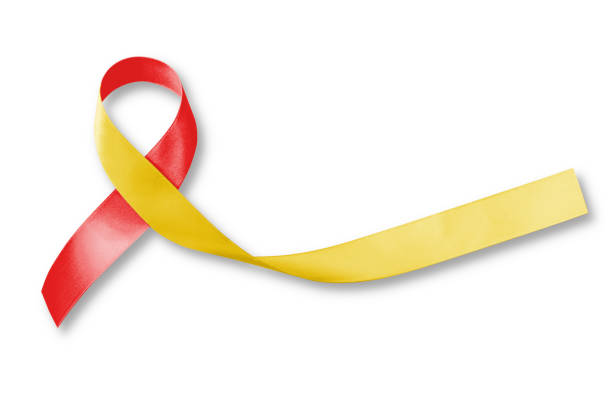 World hepatitis day and HIV/ HCV co-infection awareness with red yellow ribbon (isolated  with clipping path on white background) stock photo