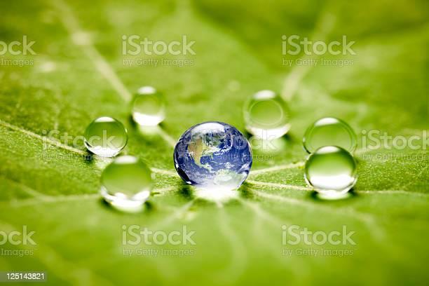 Photo of World in a drop macro