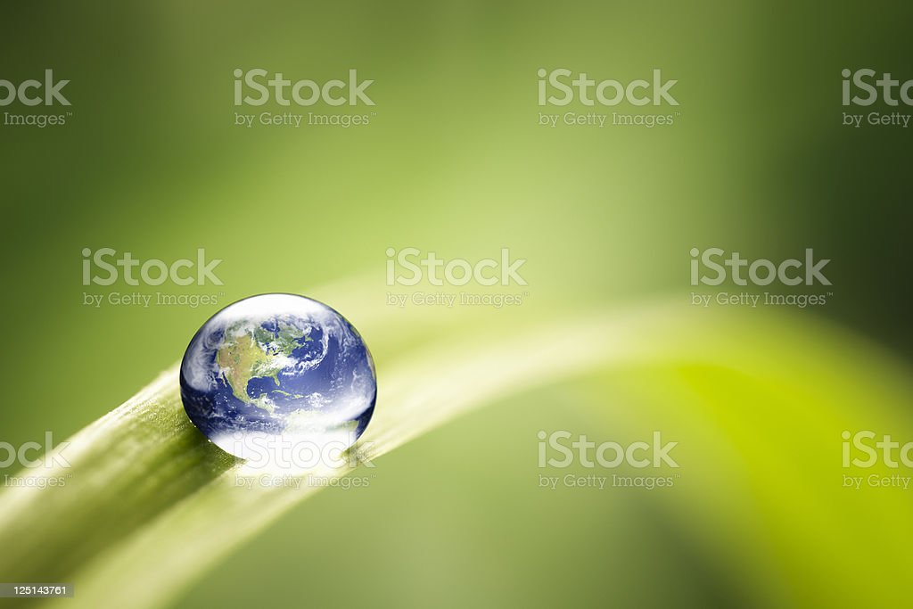 World in a drop - Nature Environment Green Water Earth royalty-free stock photo