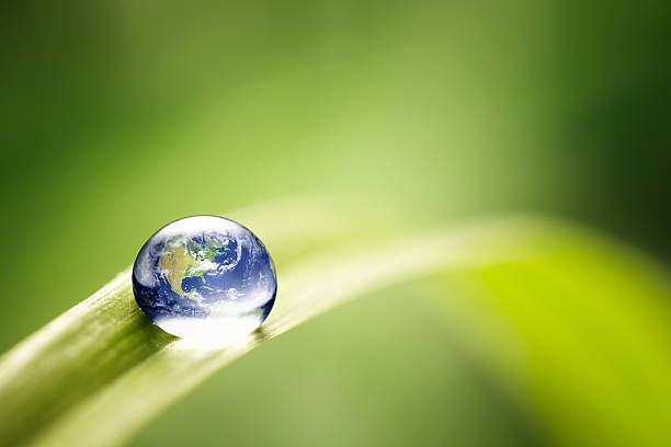 World in a drop - Nature Environment Green Water Earth stock photo