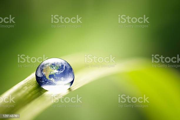 Photo of World in a drop - Nature Environment Green Water Earth