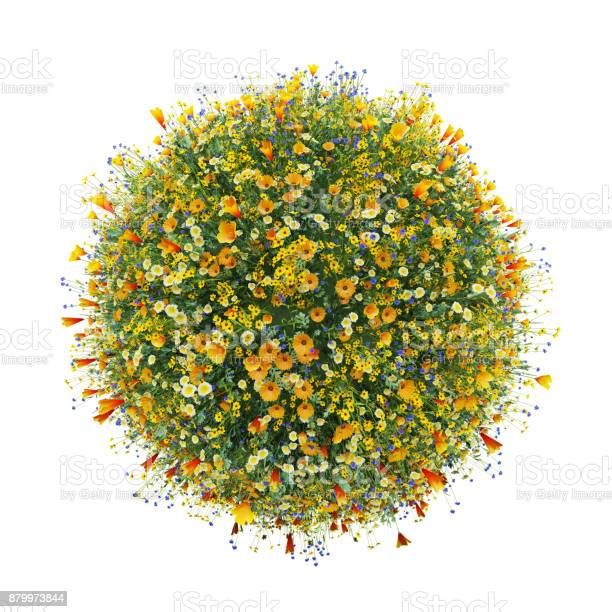 World made with flowers green world picture id879973844?b=1&k=6&m=879973844&s=612x612&h=vy7rbn9ylmhnfy4a4utnkdncesaumflh0oicjcdxwbk=