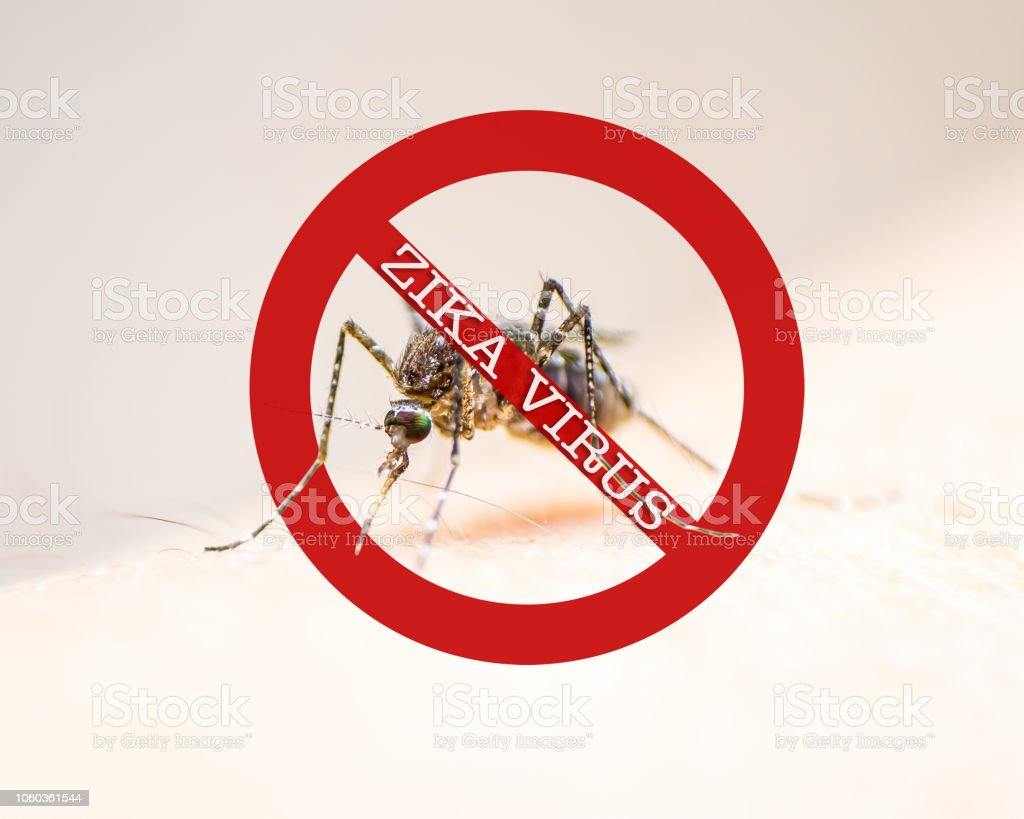 World malaria day with no mosquito sign for prevention of virus...