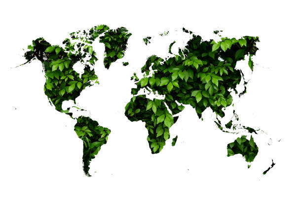 world map on green leave background – zdjęcie