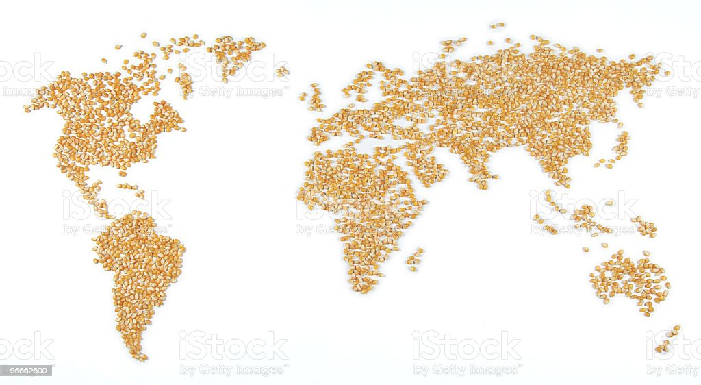 World map (corn) stock photo
