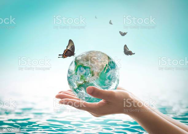 World ocean day saving water campaign sustainable ecological concept picture id962005986?b=1&k=6&m=962005986&s=612x612&h=zpn ig9oqoh6lmixycokfcmzknlxnt0kfhqxybzjlvi=