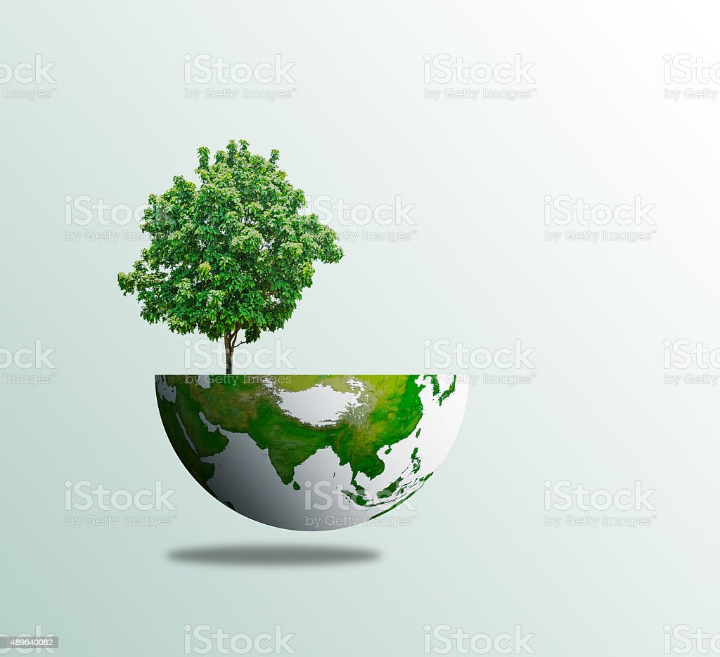 World tree day concept eco environment stock photo