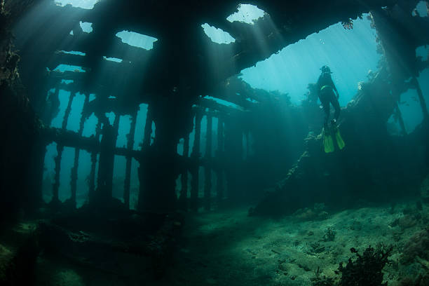 world war ii shipwreck - artificial reef stock pictures, royalty-free photos & images