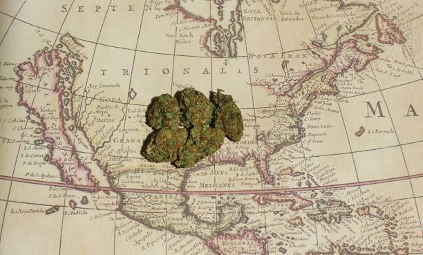Worldwide cannabis stock photo