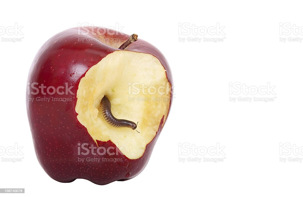 worm in apple royalty-free stock photo