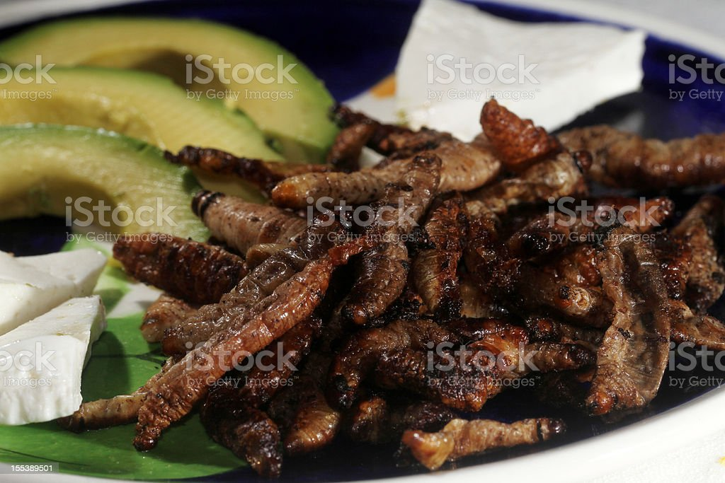 Worm, Mexican food stock photo