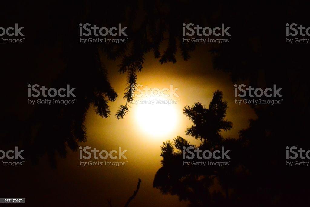 Worm Moon stock photo