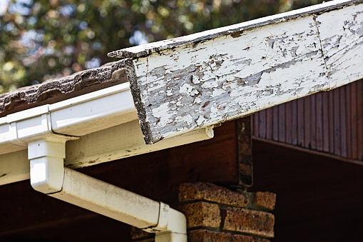 Urgently in need of some home maintenance, a worn and peeling fascia board and guttering.