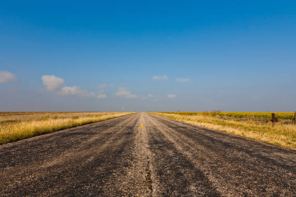 Worn Road Old black asphalt road through cornfields, Texas, USA middle of the road stock pictures, royalty-free photos & images