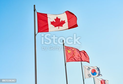 Shot of a variety of different kinds of country's flags standing next to each other outside during the day