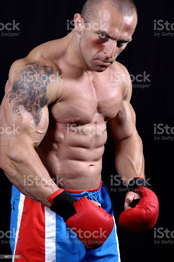 Wounded fighter portrait royalty-free stock photo