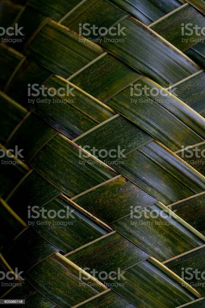 Woven from the leaves zbiór zdjęć royalty-free