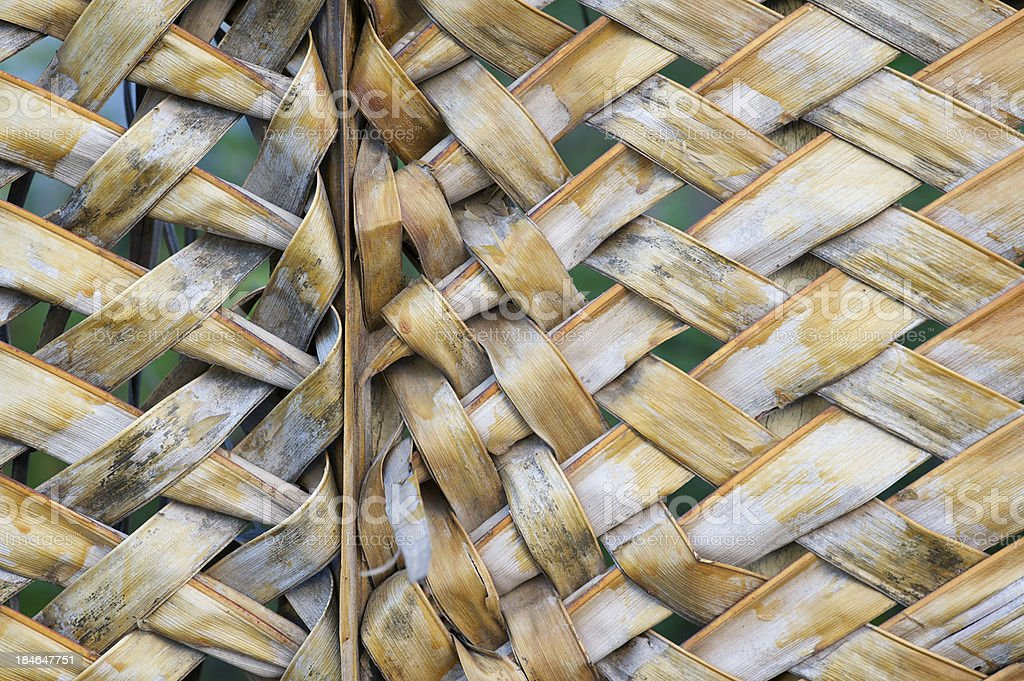 Woven Palm Frond Full Frame Horizontal Background royalty-free stock photo