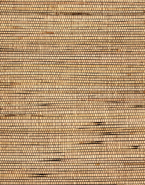 woven rattan strips in plain weave stock photo
