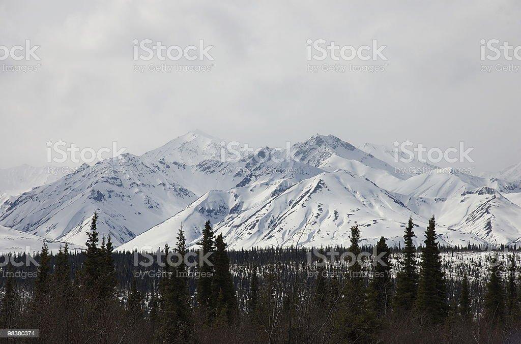 Monti Wrangell foto stock royalty-free