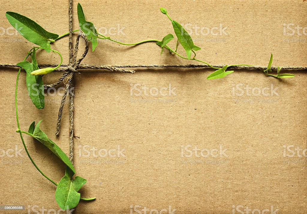 Wrapped box with rope and leaves royalty-free stock photo