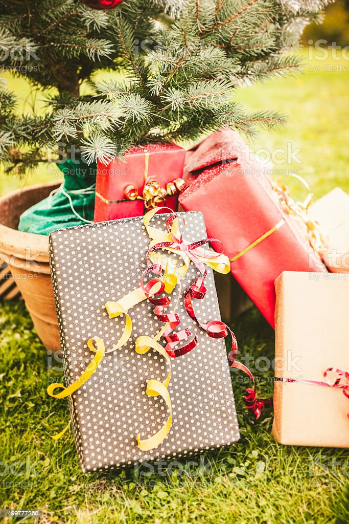 Wrapped Gifts Under a Small Christmas Tree Outdoors stock photo