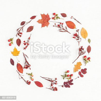 istock Wreath made of autumn flowers, leaves. Flat lay, top view 831895916