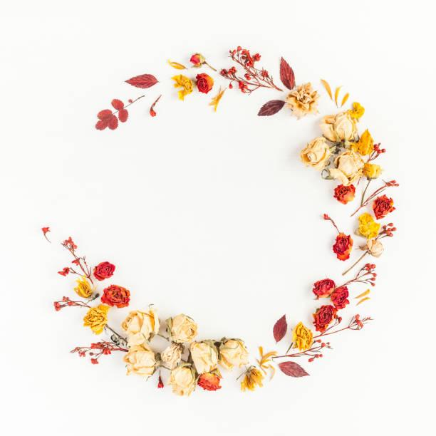 Kranz gemacht im Herbst Blätter, Blüten. Flach legen, Top Aussicht – Foto