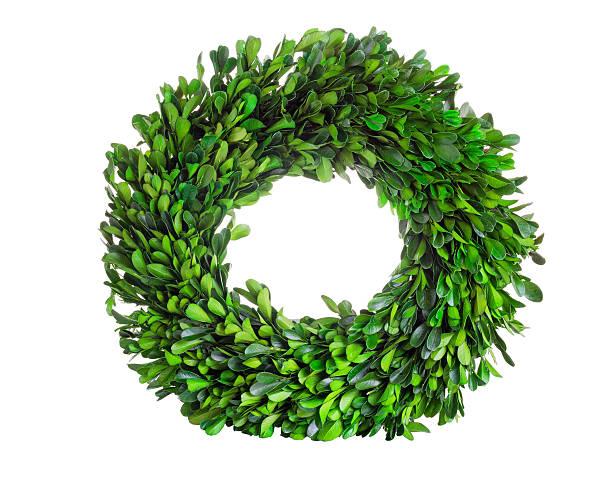 buis avec couronne en couronne florale de feuilles sur fond blanc - buis photos et images de collection