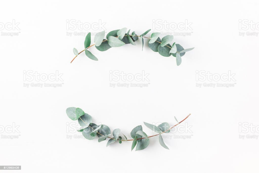 Wreath made of eucalyptus branches. Flat lay, top view