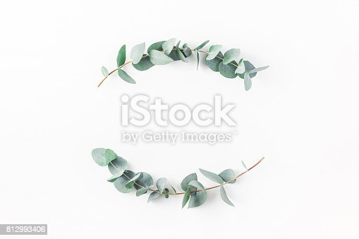 istock Wreath made of eucalyptus branches. Flat lay, top view 812993406